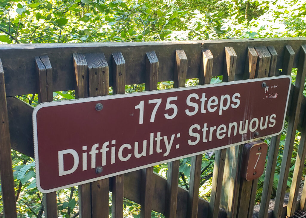 175 Steps from Bottom to Middle of Amicalola Falls