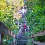 Guide to Visiting Georgia's Beautiful Amicalola Falls