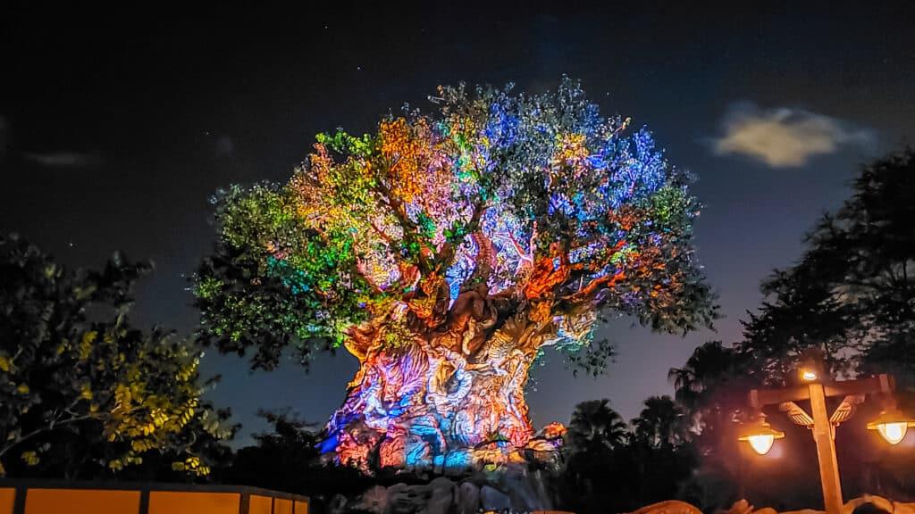 Tree of Life Awakenings projects on Animal Kingdom's Tree of Life